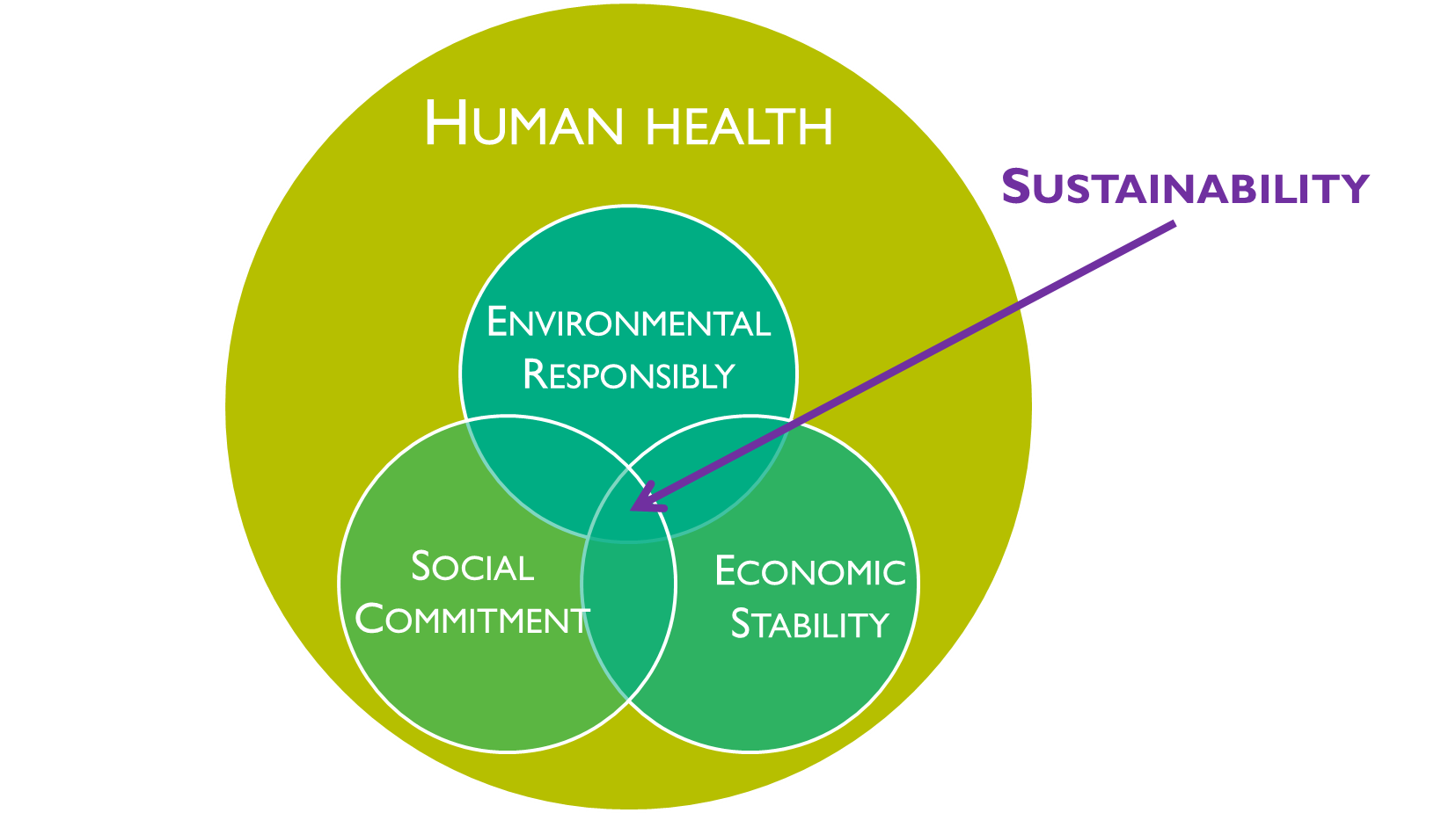 sustainability and environment Supporting and creating a sustainable ecosystem must, of course, place  significant focus on environmental protection after all, our interactions.